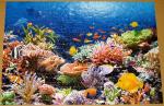 Пазлы castorland Коралловый риф